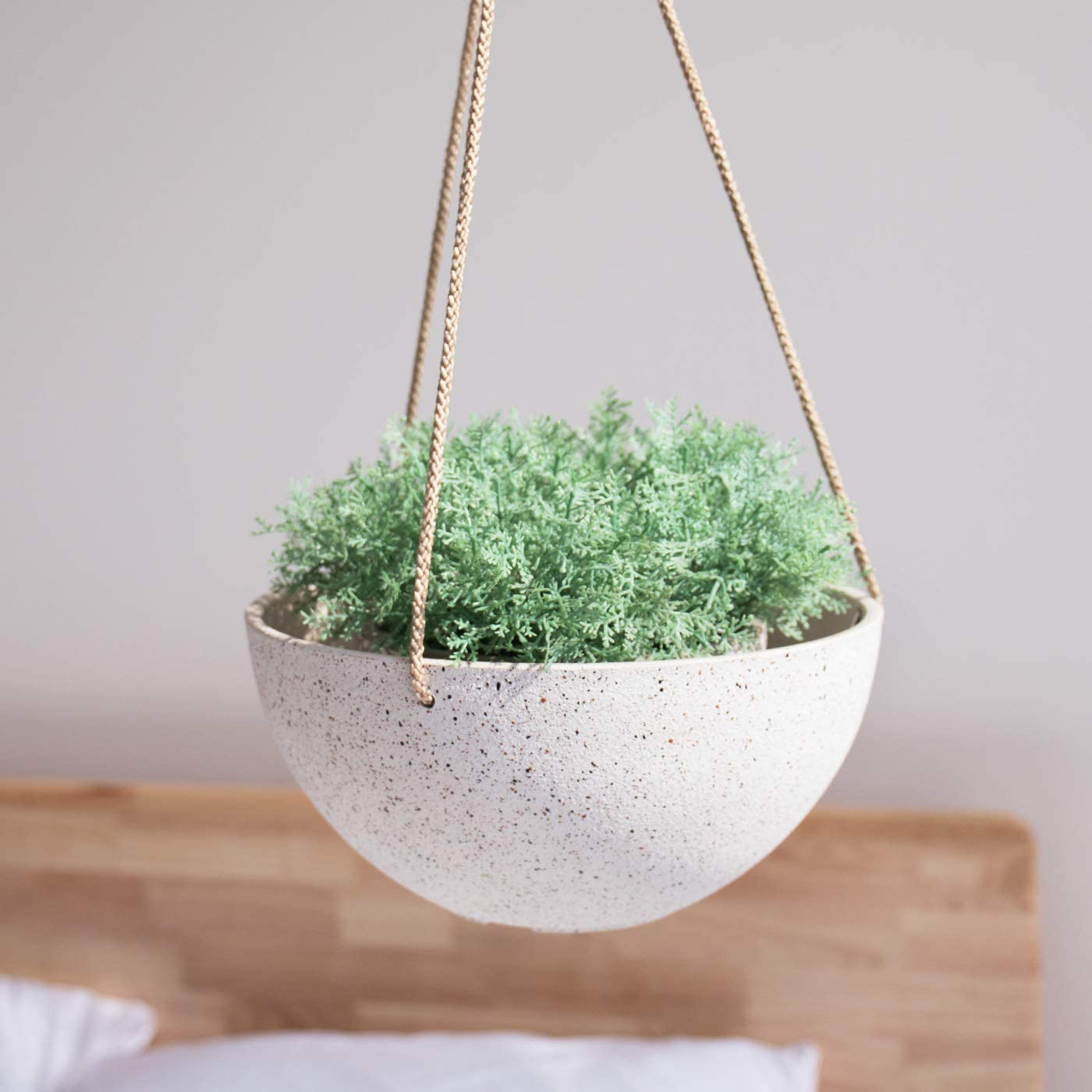 Greenhouse 6 Inch Pots Flower Herb Fern Perennial Growing Gardening Qty 10