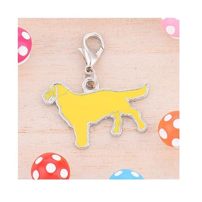 Amazon.com: Stock Show 25 mm. colgantes collar de mascotas ...