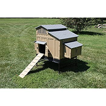 Formex Snap Lock Large Chicken Coop Backyard Hen House 4 6 Large 6 12