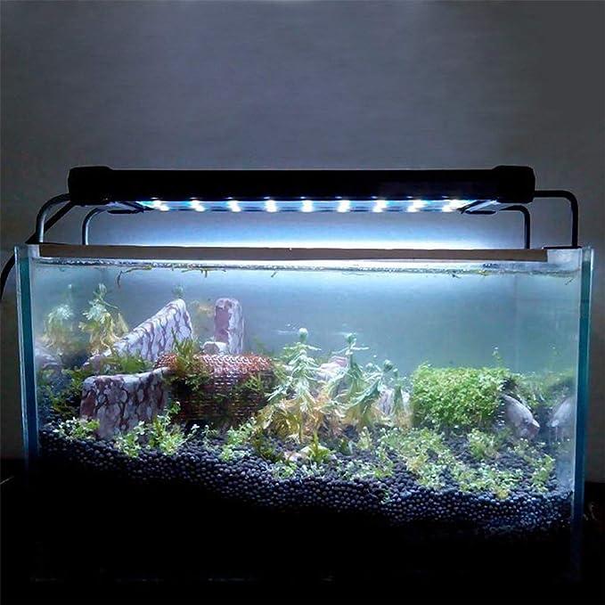 Mallalah Iluminación LED para Acuario, lámpara de Luces de Acuario, luz Azul Blanca, 6W / 11W con Soporte Ajustable para Acuario de 30 cm a 45 cm Size 36LED ...