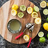 Top Rated Bellemain Premium Quality Stainless Steel Lemon Squeezer with Silicone Handles