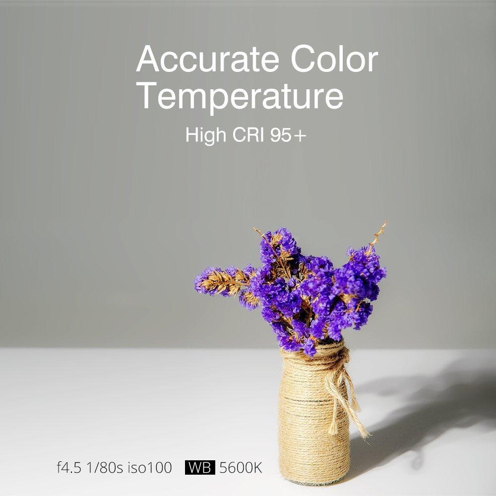 Filtros de Colores Honeycomb Grid Control Remoto con Barndoor Godox SL60W LED Foco LED Luz fr/ía 5600K CRI95+ Qa90 Montura Bowens