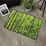 Bamboo,Door mats for Outside entryExotic Tropical Bamboo Funny Door Mat,W30xH18 inch