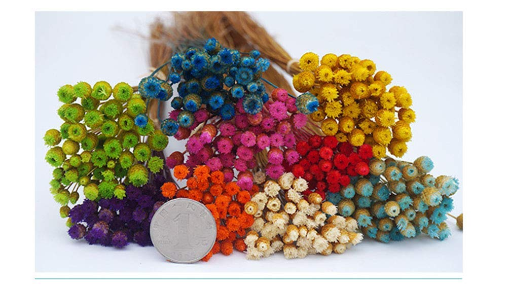 AESTHING Natural Dry Flowers Happy Flower Bundles-Flowers Bouquet for Wedding DIY Home Party 1 Bundle 50pcs Pack