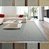 iCustomRug Zara Contemporary Synthetic Sisal Rug, Softer Than Natural Sisal Rug, Stain Resistant & Easy To Clean Beautiful Border Rug in Silver Grey 5 Feet x 8 Feet (5′ x 8′) For Sale