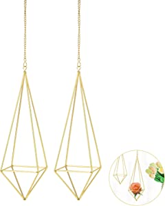 2 Packs Hanging Air Plant Holder Mini Metal Tabletop Himmeli Decor Modern Geometric Planter Tillandsia Air Fern Display Stand for Home, Office and Wedding Gift Idea (Gold)