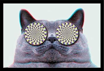 """Résultat de recherche d'images pour """"chat hypnotiseur image"""""""