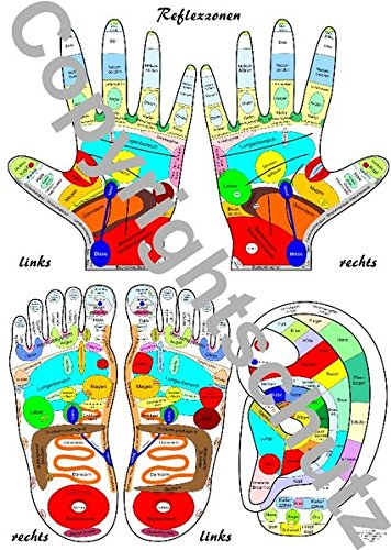 Reflexzonen Übersichtskarte Füße, Hände und Ohr DIN A5 (Lehrtafeln / Übersichtskarten)