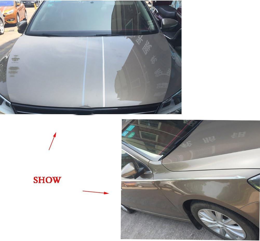 "10/"" TOTAL WIDTH //PINSTRIPES STRIPES CAR TRUCK AUTO SUV VAN CROSS OVER 6"