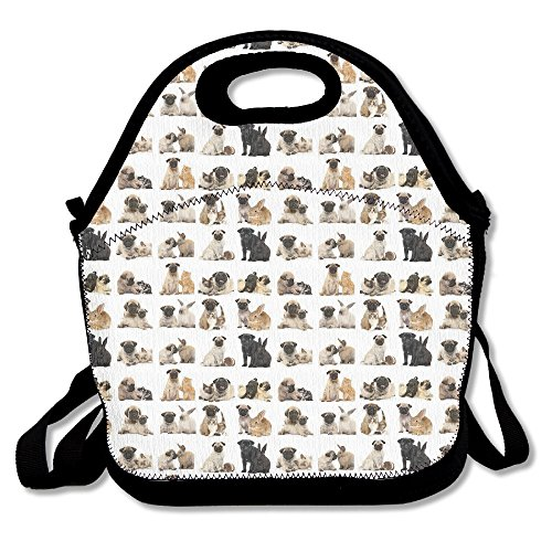 Pug Poster Lunch Bag - Prices Pugs Sunglasses