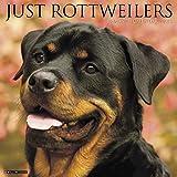 Just Rottweilers 2018 Wall Calendar (Dog Breed Calendar)