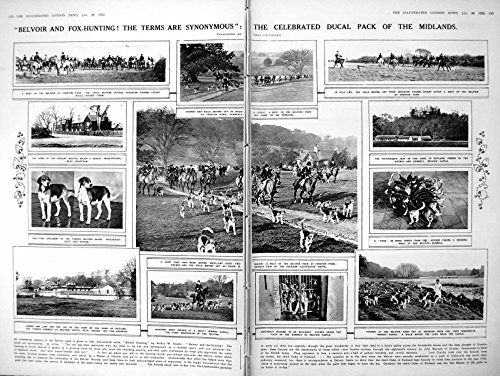Hounds Belvoir (old-print Print Belvoir Fox-Hunting Horses Hounds Prospective Lady M.P.S 1922 122P260)