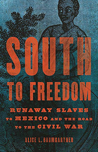Book Cover: South to Freedom: Runaway Slaves to Mexico and the Road to the Civil War