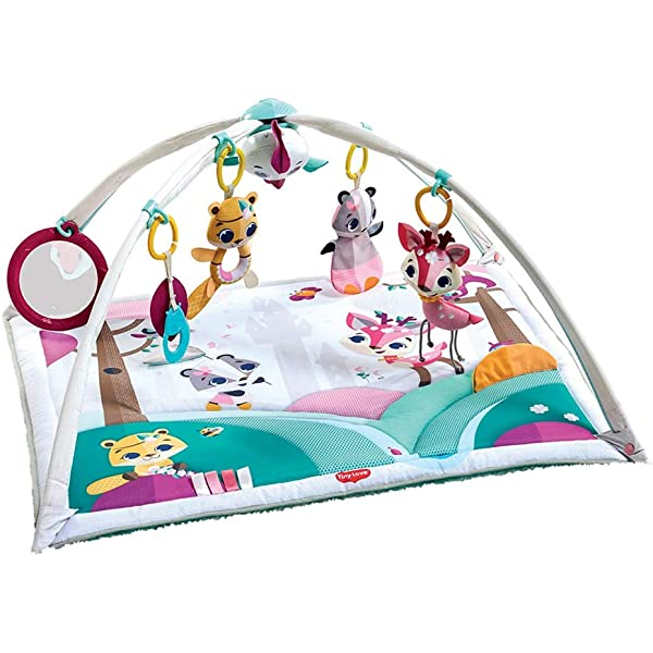 Fisher-Price Musical Portable Activity Gym Play-Mat Padded Floor Gound Blanket