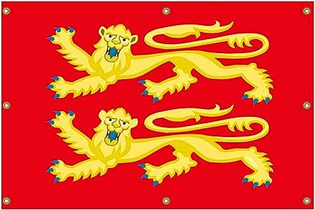 Bandera de Estilo Medieval, England Richard Lion Heart Banner Decoracion de pared140 x 90 cm, Coleccion: Amazon.es: Jardín