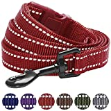 Blueberry Pet 6 Colors Durable 3M Reflective Classic Dog Leash 5 ft x 3/4, Marsala Red, Medium, Leashes for Dogs