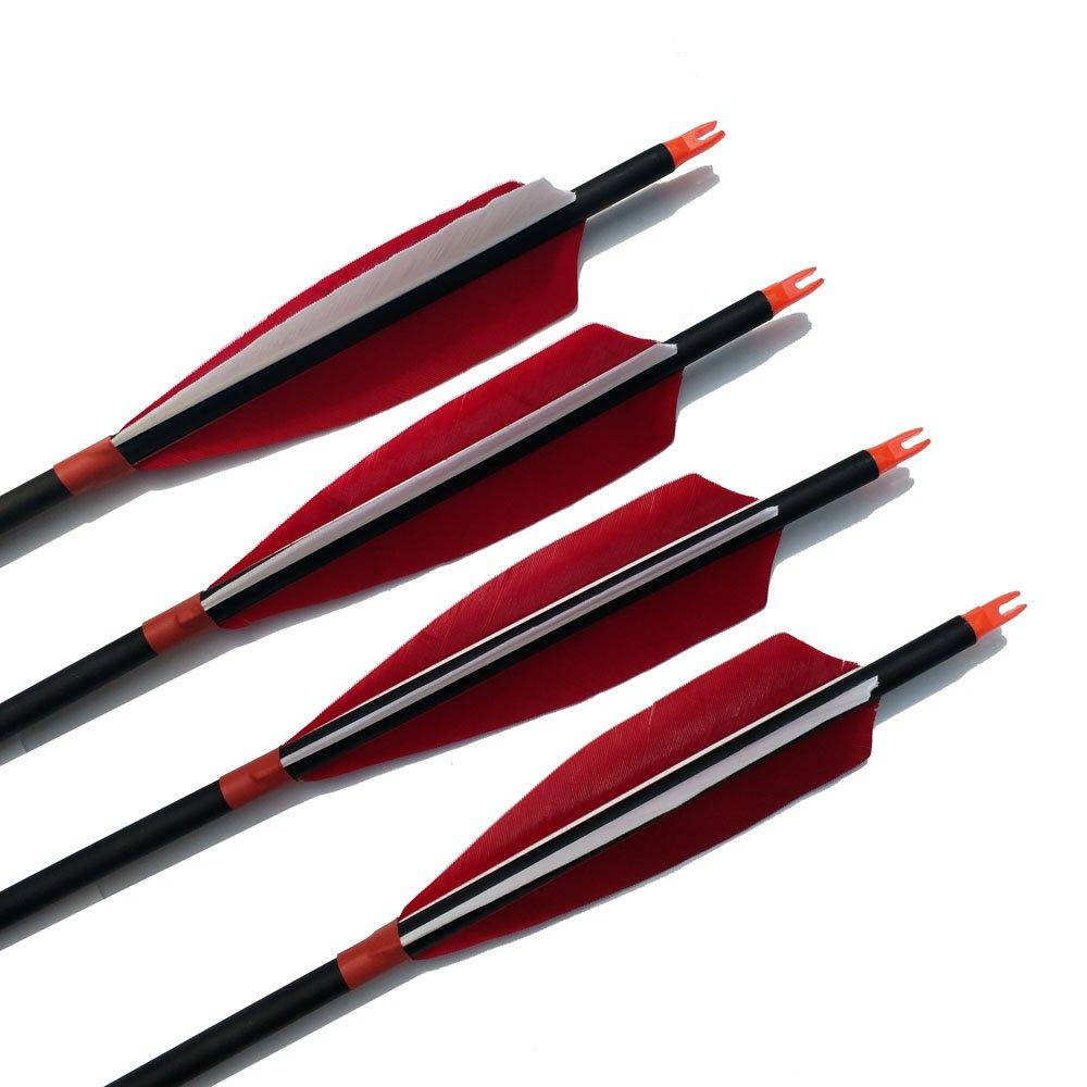 SHARROW 12pcs Carbonpfeile 30 Zoll Pfeile f/ür Bogenschie/ßen Naturfeder 5 Pfeil mit K/öcher f/ür Recurvebogen und Compoundb/ögen