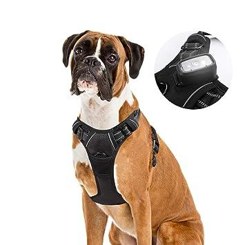 Rabbitgoo Arnés LED para perro - recargable por USB - chaleco ...