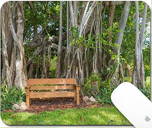 Ficus Tropical Tree (Luxlady Gaming Mousepad 9.25in X 7.25in IMAGE: 43026898 Beautiful Banyan tree in botanical garden)