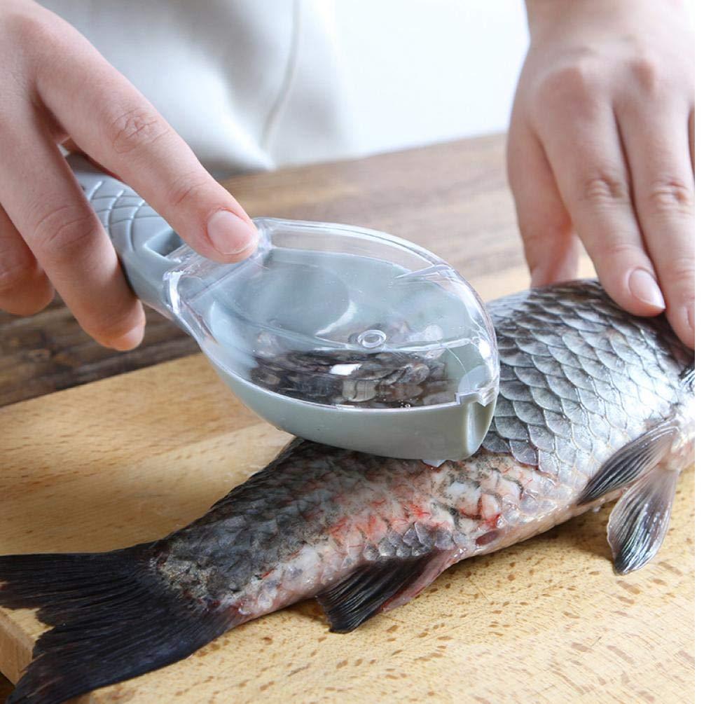 Facile /à Nettoyer Poissons en Plastique Outil de Nettoyage Outil de Cuisine avec Couvercle Ustensiles de Cuisine Poisson Echelle Manuelle Scraper Hangable,