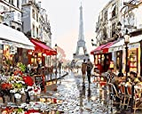 DIY Oil Painting Newsight Paintworks Paint By Number for Kids and Adults (Romantic Paris Street Eiffel Tower)