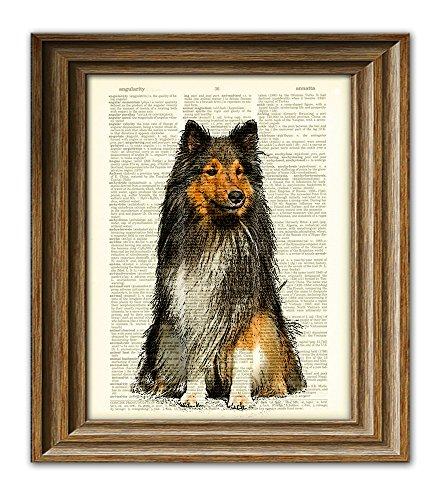 (Sheltie Shetland Sheepdog Collie dog beautifully upcycled vintage dictionary page book art print)