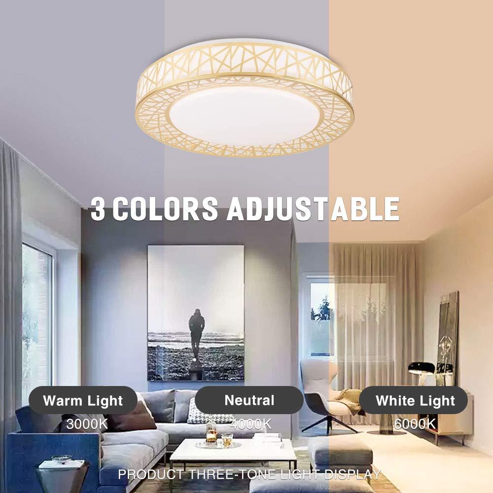 Neporal LED Ceiling Light Fixture,16 Inch-30W-Flush-Mount-Ceiling-Light,3 Color Temperature Light Fixtures Ceiling for Bedroom,Kitchen,Living Room