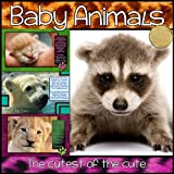 """Baby Animals - The Cutest of the Cute"" (Our Big Wide World! Book 1)"