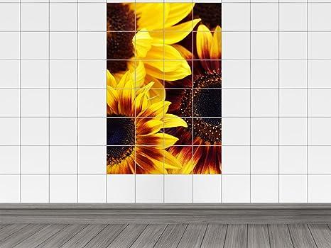 Piastrelle adesivo piastrelle immagini girasoli in primo piano per