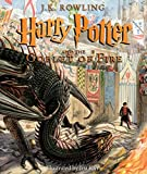 Books : Harry Potter and the Goblet of Fire: The Illustrated Edition