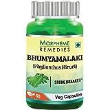 Morpheme Remedies Phyllanthus Niruri Bhumyamlaki 500 mg - 60 Veg Capsules