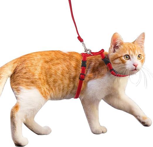 HOMIMP - Juego de arnés y correa de nailon ajustable para gatos, terciopelo y correa de nailon para caminar: Amazon.es: Productos para mascotas