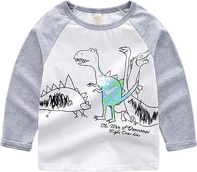 PinkLu Niño Gris O-Cuello Manga Larga Dibujos Animados Dinosaurio Imprimiendo Arriba Primavera Verano Cómodo: Amazon.es: Ropa y accesorios