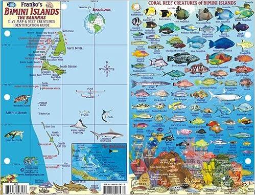 bimini islands bahamas dive map reef creatures guide franko maps