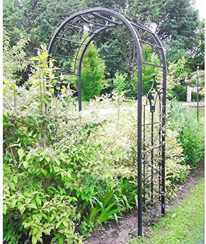 Arco Princess arco para flores Rosal Tuteur plantas de jardín paso de hierro forjado marrón martillado o negro 61 x 124 x 229 cm – marrón martillado: Amazon.es: Jardín