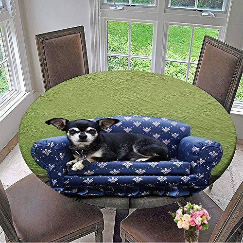 Mikihome Round Premium Table Cloth a Tiny Chihuahua Lying on a Couch Perfect for Indoor, Outdoor 50