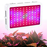Tdogs LED Grow Light,1000W Full Spectrum Hydro Plant Growing Lights For Medical Plants Veg,Bloom Fruit Pro Indoor Plants Greenhouse Flower Growing