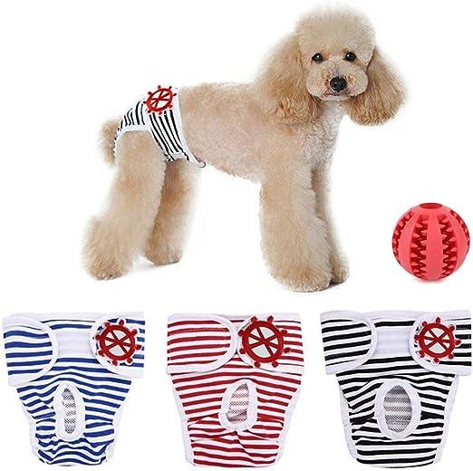 Shuibian 3 Pack Perro Mascota Phys Iolo Estratégica höschen ...