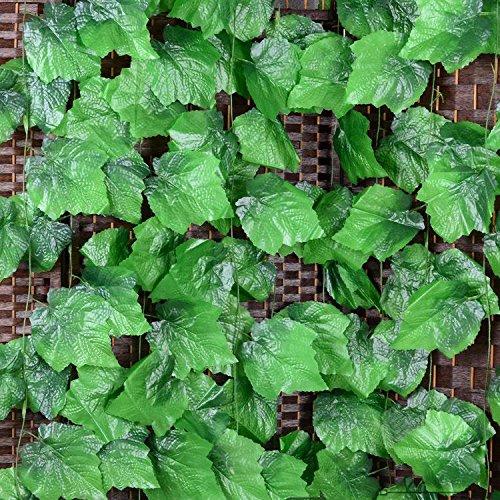 Grapevine Leaf - 1