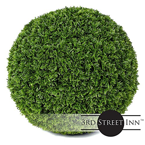 Cypress Topiary Ball - 11