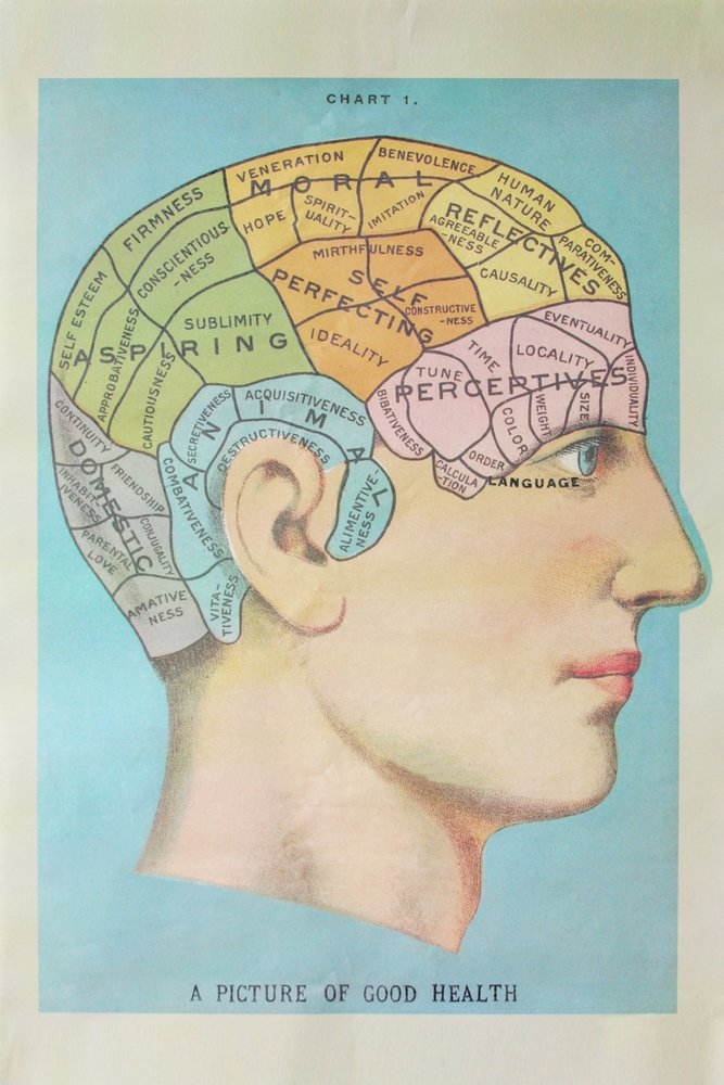 A Picture of Good Health - Vintage Cognitive Science Lithograph (16x24 Gallery Quality Metal Art)
