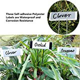 Amatory Garden Markers Signs Plant Labels Tags