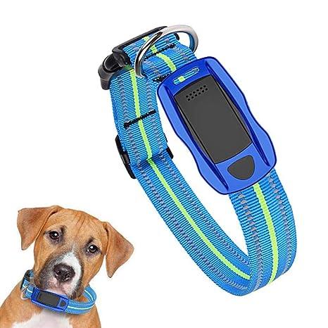 Amazon.com: FXQIN - Localizador GPS para perros, impermeable ...