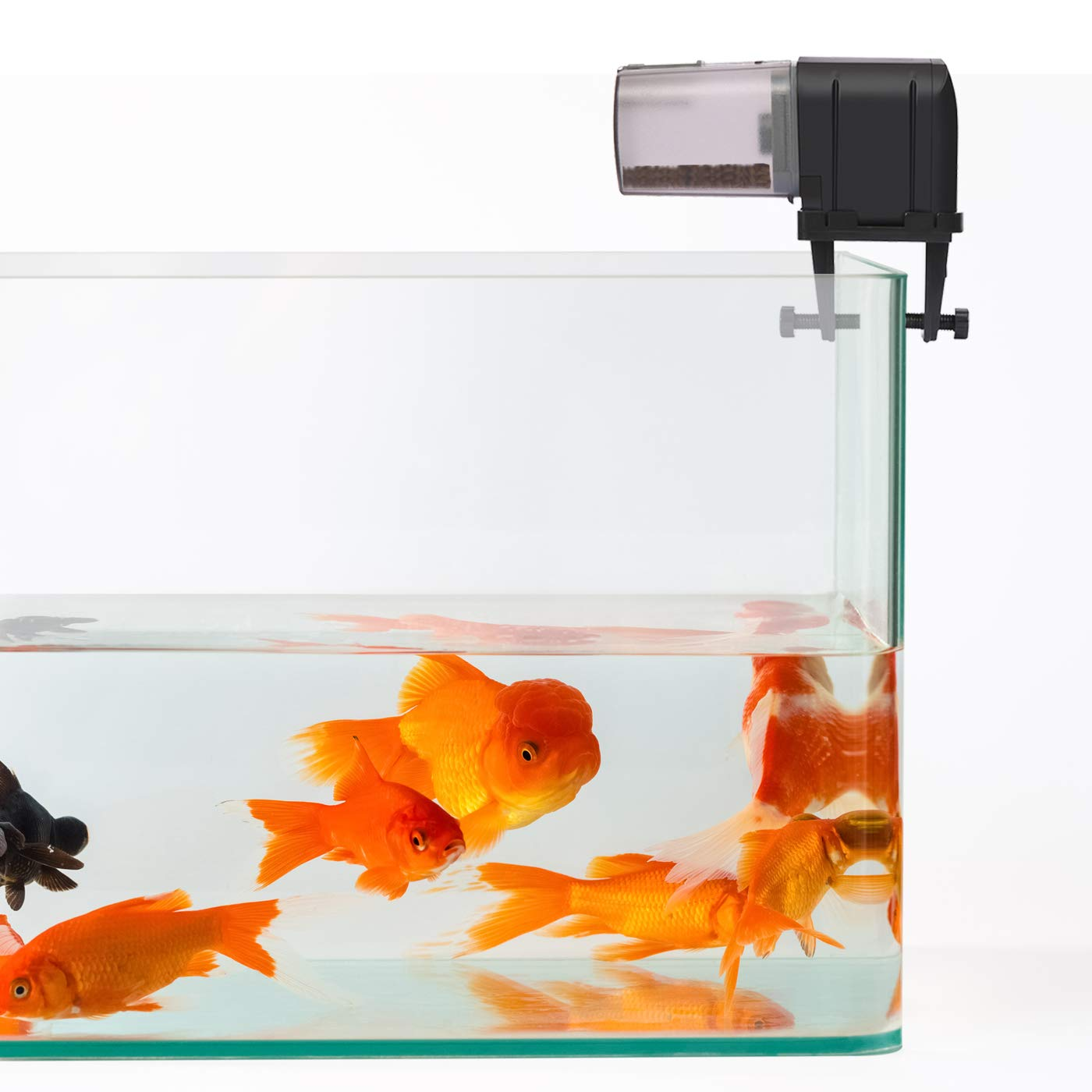 HDE Automatic Fish Feeder WiFi Enabled Programmable Aquarium Smart Device App Controlled Fish Food Dispenser (Black) by HDE (Image #2)