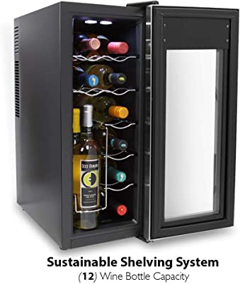 12 Bottle Wine Cooler