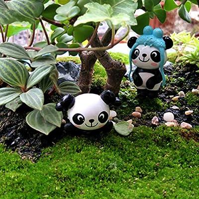 Amosfun 12 Piezas Figuras de Panda en Miniatura Adorno Jardín de Hadas Cake Toppers Mini Figura de Navidad Bonsai Casa de Muñecas Decoración de Pastel Tarta: Amazon.es: Hogar