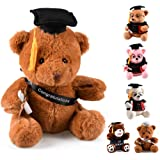 hey seven Graduation Bear 10 inch Class of 2020 Stuffed Animal Plush Gift Bear (Black)