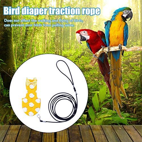 KiGoing Pañales para Mascotas, Ropa de pájaro, Loro, arnés, Cuerda ...