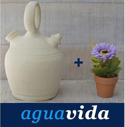 Hogar y Mas Set Planta y Botijo Dispensador de Agua H2O 1,5 litros ...
