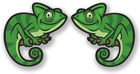 2 x Chameleon Vinyl Sticker Laptop Travel Luggage Car #6684